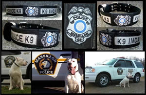 K9 Inca Massillon OH tn