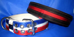 Red collar with black split stripes and white collar with royal blue and red stripes