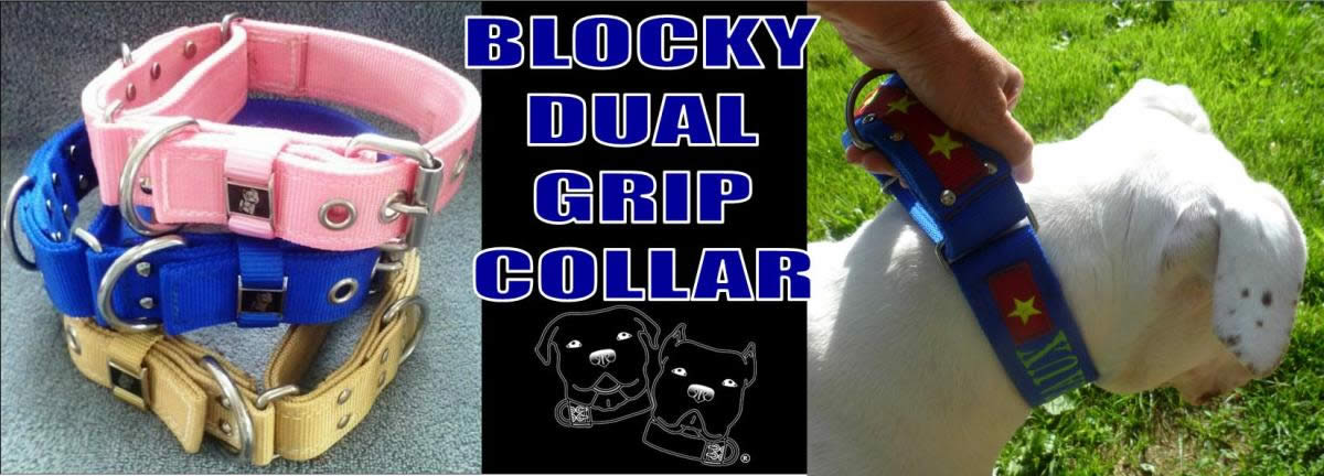 Martingale style collars with a buckle closure.